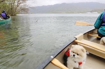 十和田湖カヌーツアー