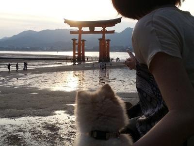 厳島神社(干潮時)
