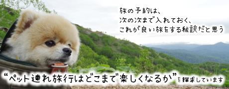 トラベルドッグ ペット旅行ガイド