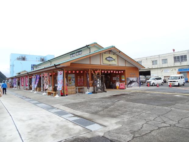 紀州勝浦 生マグロ